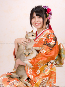 猫撮影スタジオの写真 シンガプーラ