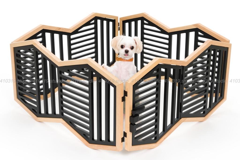 ミックス犬 マルチーズとチワワ 410319.studio